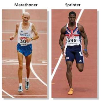 maratonista e corredor